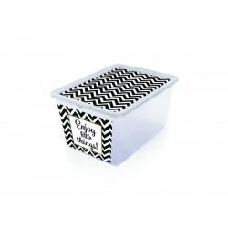 pojemnik plastikowy xbox deco zegzaki_gdm_731522_EAN_jpg.jpg