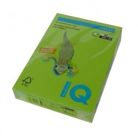 IQMA42.jpg